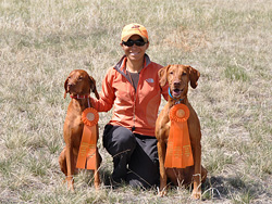 Vizslas Kosmo and Remus show off their ribbons for AKC Master and Senior Hunter qualifies!