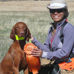 Vizsla Amante and Mel celebrate AKC Junior Hunter qualifies!